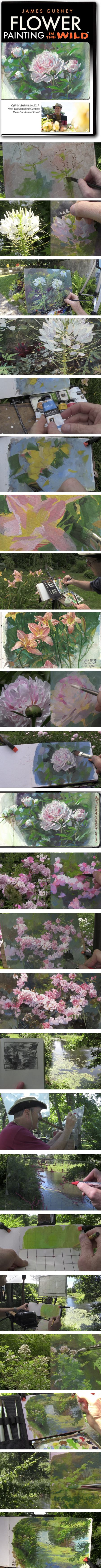 James Gurney Flower Painting in the Wild