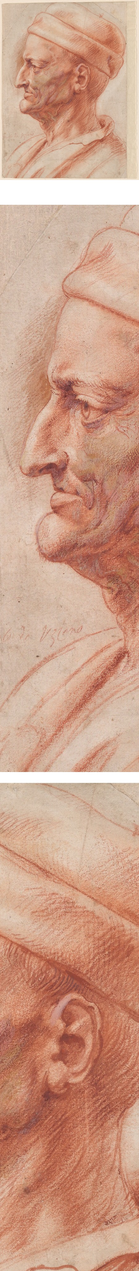 Rubens red chalk profile portrait